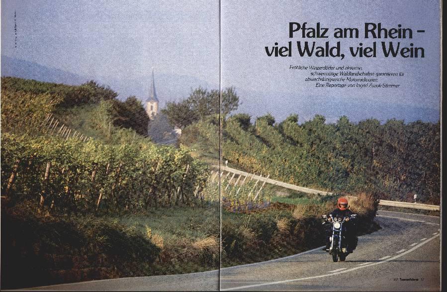 Pfalz am Rhein