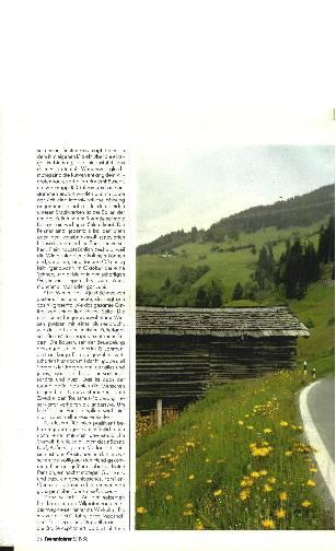 Ost- Tirol