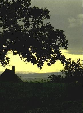 Bodensee - Mild und idyllisch