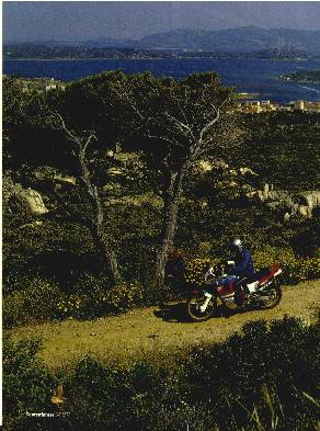 Sardinien - Wenn die Macchia erwacht ..