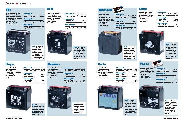 Service Batterie-Test