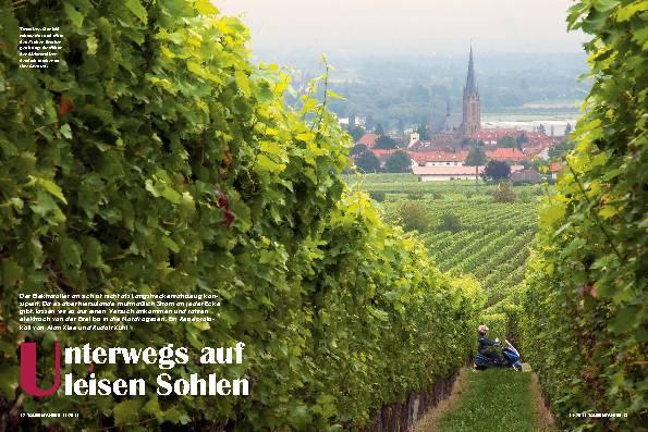 Pfalz - Unterwegs auf leisen Sohlen