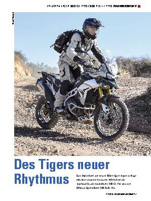 Des Tigers neuer Rhythmus